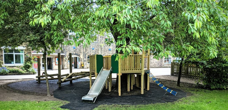 eco playground equipment surrounding a tree