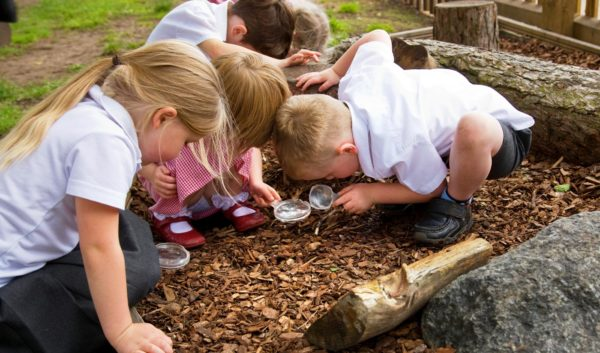 children enjoying using natural playground equipment