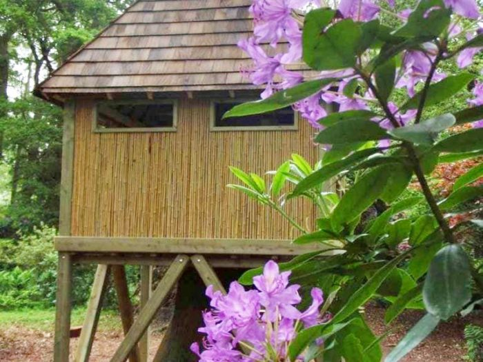Yorkshire Wildlife Trust's playground tree house to observe nature